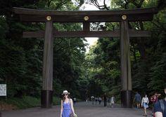 Meiji-shrine-Tokyo-travel-diary