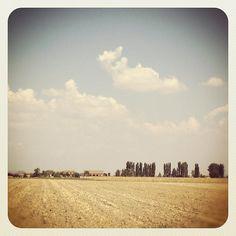 "@mauroparolo's photo: ""#ig #iphone #campagna #sky"""