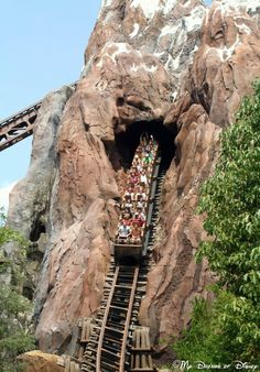 A thrilling roller coaster located in Disney's Animal Kingdom park!