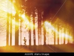 Impressionistic montage or runner in the forest with light drawing.  © Blackout Concepts / Alamy