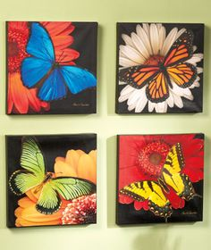 butterfly painting. I like all of these together. So pretty.
