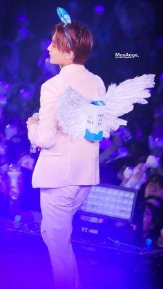 Pledis Entertainment, Jeonghan, Entertaining, Kpop, Concert, Hani, Personality, Drama, Concerts