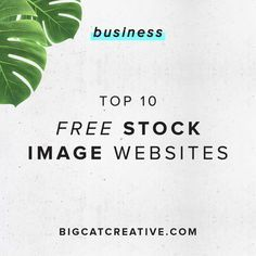 Top 10 FREE Stock Image Websites  Big Cat Creative | Free stock images | Free high quality images | Free stock photography | Free photographs | Free images for bloggers | High quality stock images | Styled stock photos | Images for small business owners | Professional images | Free professional images for bloggers