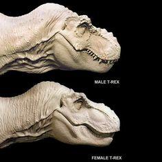 JP T-rex sculpt