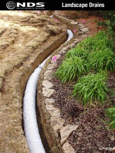 Shop NDS 4-in x 10-ft Corrugated French Drain Pipe at Lowes.com