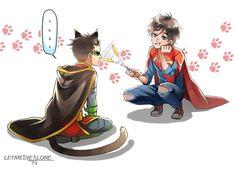 Damijon   supersons