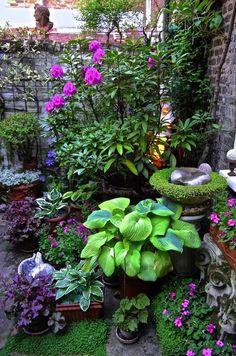 Garden Design Plans - New ideas Garden Yard Ideas, Lawn And Garden, Garden Bar, Beer Garden, Landscaping With Rocks, Backyard Landscaping, Small Gardens, Outdoor Gardens, Shade Garden Plants