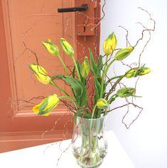 Tulips Parrot - Blumenabo von StarFlower Langstielige französische Tulpen haben wir diese Woche mit Weidenzweigen kombiniert. Das Tulpenbouquet in strahlendem Gelb passt perfekt zur Osterzeit. Star Flower, Flowers, Plants, Yellow, Creative, Plant, Royal Icing Flowers, Flower, Florals