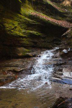 Waterfall in Woods- Turkey Run State Park IN- Image by Kelly Oswalt