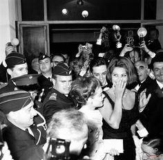 Romy Schneider, Sophia Loren and Alain Delon, Cannes, 1962 1000×983 пикс