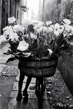 Flowers courier...