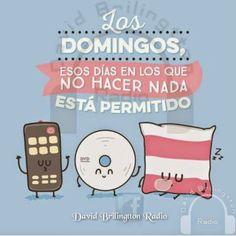Los DOMINGOS no hacer nada esta permitido.... ~ Radio Palomo