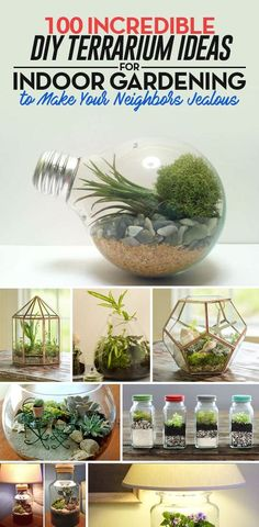 You can make your own terrarium with these unique DIY ideas for your indoor garden. All these terrariums are adorable and perfect for your indoor settings.