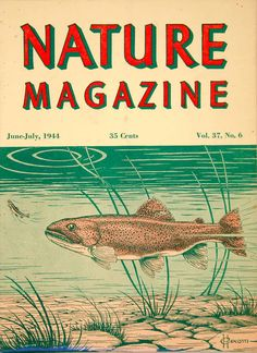 1944 Cover Lithograph Nature Magazine Rainbow Trout Fish Hexom Wildlife Art YNM5