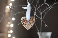 This site shows how to make bird seed ornaments for the birds...Another earth day fun birthday giviaway or something...