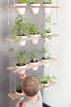 Een hangende kruidentuin bespaart veel ruimte in een kleine keuken