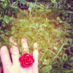 Día 19 de abril de 2014