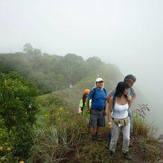 Bosque de niebla Cundinamarca excelentes paisajes