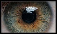auto-reverse-eye