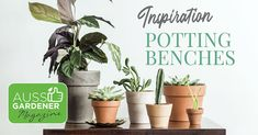 Check out these ideas and inspiration for the perfect potting bench, from cheap and cheerful to grand. There is a design for everyone. Garden Beds, Garden Design, Moisturizer, Miniature, Bench, Design Ideas, Gardening, Magazine, Plants
