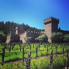 #CastellodiAmorosa the only authentically-built medieval (13th-century) Italian Tuscan #castle and winery built in #America officially lowered its drawbridge for business in April 2007. Castello di Amorosa is nestled in the western hills on 171 acres just minutes south of The Napa Valley town of Calistoga. After several decades of personal adventure visiting and studying medieval castles and #wineries throughout Italy and Europe Dario Sattui a successful 4th-generation Italian winemaker and…