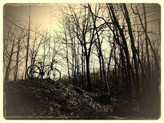 Moody mountain bike...