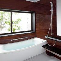 Toto, Half Baths, Bathtub, Bathroom, Half Bathrooms, Standing Bath, Washroom, Bathtubs, Bath Room
