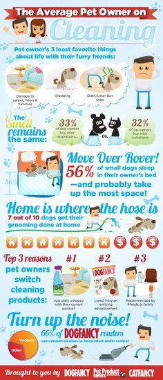 Average Dog Infographs by Derek Moore