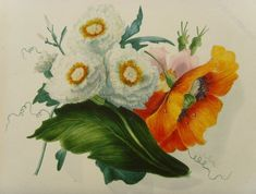 Antiques Atlas - Mrs. F.T. Lines Botanical Watercolour Poppies 1850 Watercolor Poppies, Watercolour Paintings, Castle School, Royal Society Of Arts, Teaching Drawing, Picture Wire, Antiques, Drawings, Antiquities