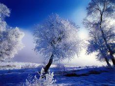 norsk natur vinter - Google-søk