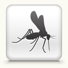 Royalty free vector icon button with Mosquito Icon vector art illustration