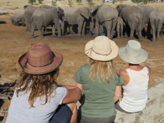 Megan and fellow travelers wisely protecting themselves from the sun @elephantsands