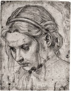 Pencil Portrait Giclee Print: Face of a Woman with Ruffled Hair, Looking Down by Andrea del Sarto : - Portrait Sketches, Pencil Portrait, Portrait Art, Art Sketches, Art Drawings, Portraits, Woman Sketch, Woman Drawing, Woman Looking Down