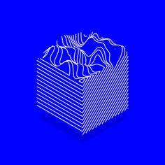 eightninea:  Moogfest —