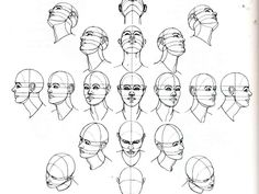 head viewed from different perspectives
