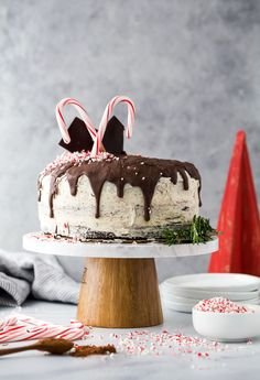 A moist & rich Vegan Chocolate Cake layered with creamy Peppermint Buttercream. An easy recipe for extremely decadent and perfectly moist chocolate cake that you'll swoon over! I guarantee this will be your new go to chocolate cake recipe! Gluten Free Chocolate Cake, Vegan Chocolate, Chocolate Peppermint Cake, Buttercream Recipe, Easy Smoothie Recipes, Coconut Recipes, Moist Cakes, Vegan Cake, Ice Cream Recipes