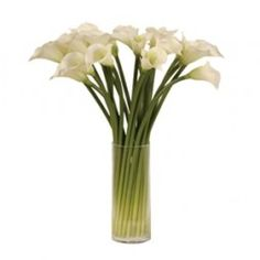 A Stunning Arrangement of White Calla Lilies in a Glass Column Shaped Vase. These are so realistic & such an elegant vase of flowers ideally stood on a Artificial Plants And Trees, Artificial Flower Arrangements, Artificial Flowers, Floral Arrangements, Calla Lillies, Calla Lily, Round Vase, Clear Glass Vases, White Lilies