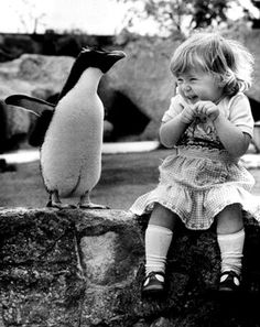 Yes, this funny penguin makes this girl laugh. What did the penguin say that was so darn funny? Here's four possibilities: Q: Whats a penguins favorite relative? Cute Kids, Cute Babies, Funny Kids, Baby Animals, Cute Animals, Funny Animals, Tier Fotos, Jolie Photo, Black And White Photography