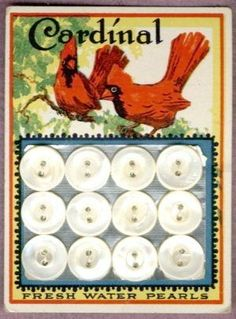 Vintage Cardinal Pearl Button card