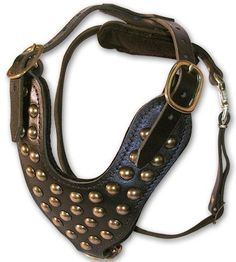 Studded Walking dog harness