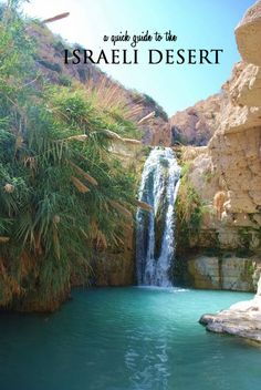 A quick guide to the Israeli Desert -