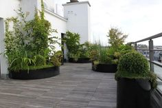 Planters on roof terrace Beautiful container plantings Porch And Terrace, Rooftop Terrace, Terrace Garden, Garden Planters, Orangerie Extension, Green Roof System, Green Facade, Landscape Architecture Design, Sustainable Architecture