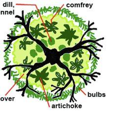Apple Tree Guild