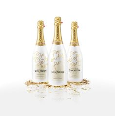 Chandon - Pours on the Fun on Packaging of the World - Creative Package Design Gallery