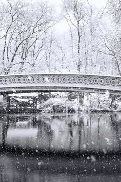 Central Park's Bow Bridge in the snow