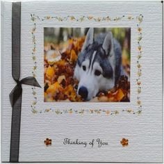 Thinking of you card sympathy husky dog handmade hand crafted hand painted Listing in the Greeting Cards,Other Occasions,Occasions & Seasonal Category on eBid United Kingdom