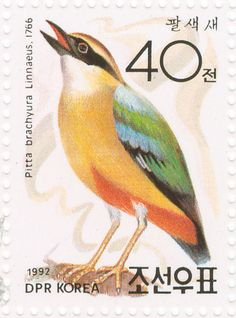 Fairy Pitta stamps - mainly images - gallery format