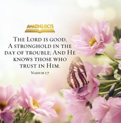NAHUM 1:7  7 The Lord is good,     a refuge in times of trouble. He cares for those who trust in him,