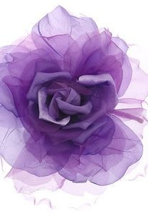 Soft Fabric Purple Rose