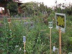 """orto capovolto"" art exhibition in a vegetable garden, Rome 2012"